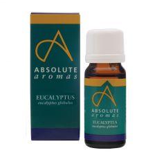 Absolute Eucalyptus Globulus (10Ml)