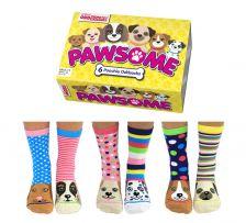 Sock Academy Pawsome Odd Socks
